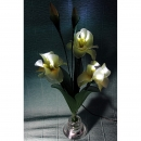 Led night light - Yellow Irises